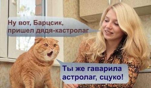 http://ord-ua.com/media/uploads/kosharik.jpg